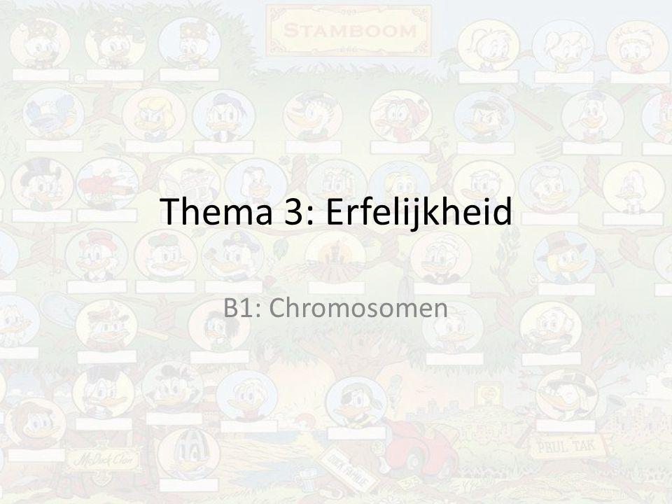 Autosomen en geslachtschromosomen Autosomen: – chromosomen zijn gelijk bij man en vrouw Geslachtschromosomen: – chromosomen zijn verschillend bij man en vrouw Vrouw: XX Man:Xy