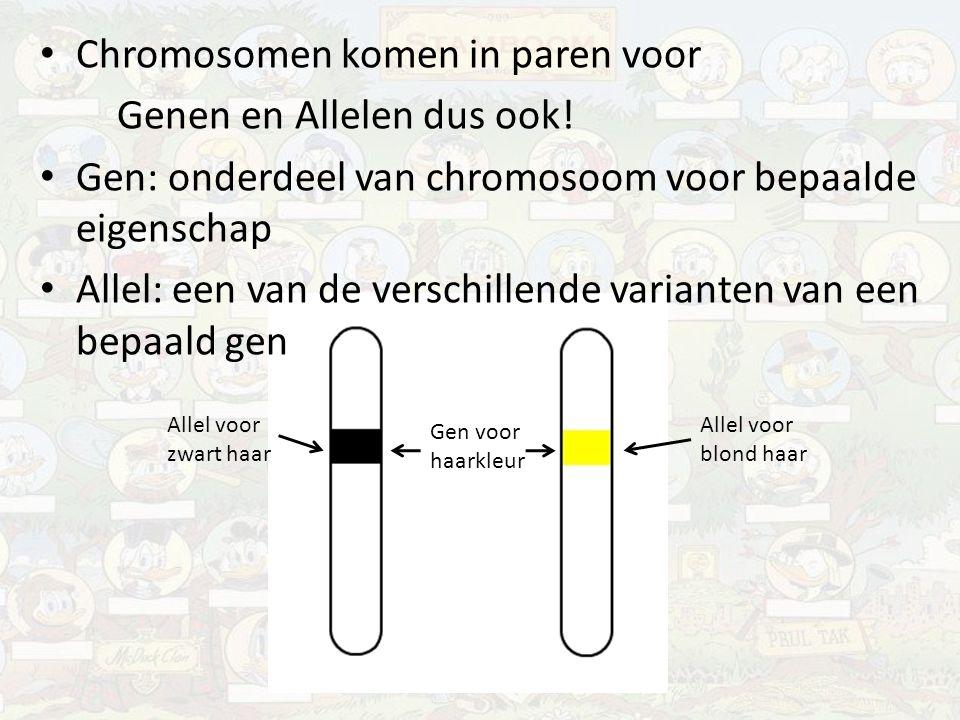 Chromosomen komen in paren voor Genen en Allelen dus ook! Gen: onderdeel van chromosoom voor bepaalde eigenschap Allel: een van de verschillende varia