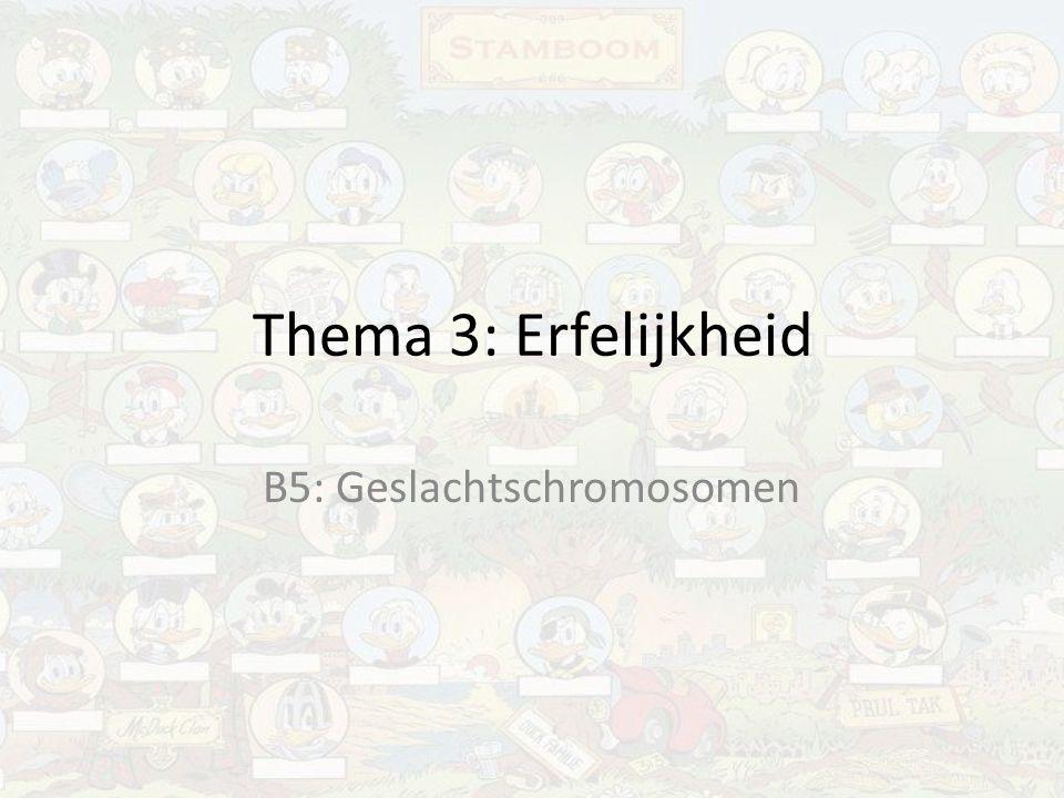 Thema 3: Erfelijkheid B5: Geslachtschromosomen