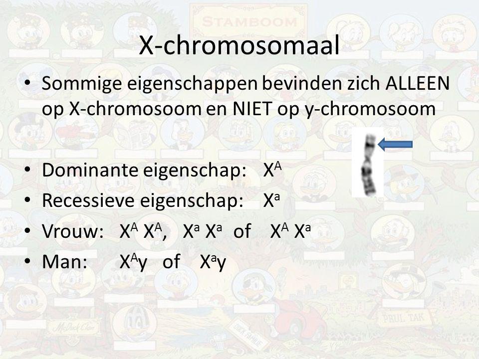 X-chromosomaal Sommige eigenschappen bevinden zich ALLEEN op X-chromosoom en NIET op y-chromosoom Dominante eigenschap:X A Recessieve eigenschap:X a V