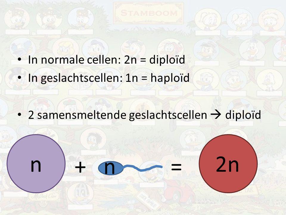 Samenvatting Eigenschappen van organismen zitten in DNA, DNA zit in chromosomen.
