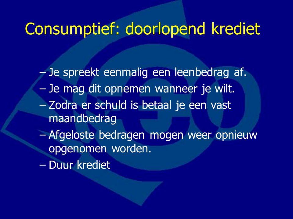 Consumptief: doorlopend krediet –Je spreekt eenmalig een leenbedrag af.