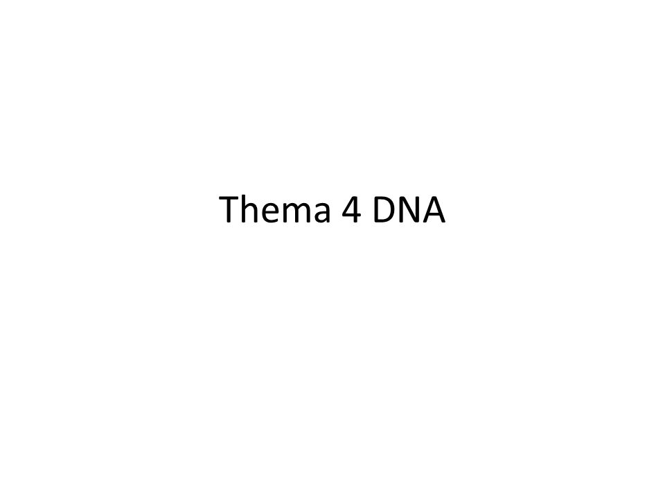 Thema 4 DNA