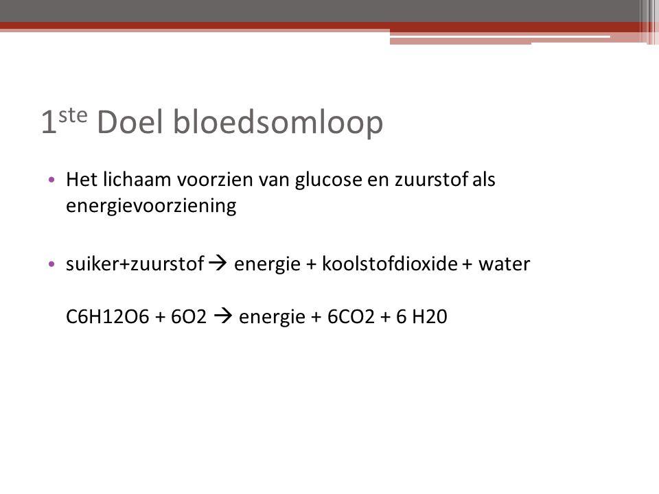 1 ste Doel bloedsomloop Het lichaam voorzien van glucose en zuurstof als energievoorziening suiker+zuurstof  energie + koolstofdioxide + water C6H12O6 + 6O2  energie + 6CO2 + 6 H20