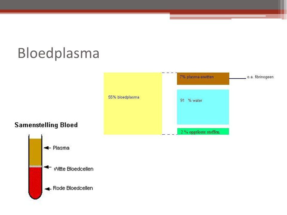 Bloedvaten 3 verschillende typen ▫ slagader ▫ ader ▫ haarvat