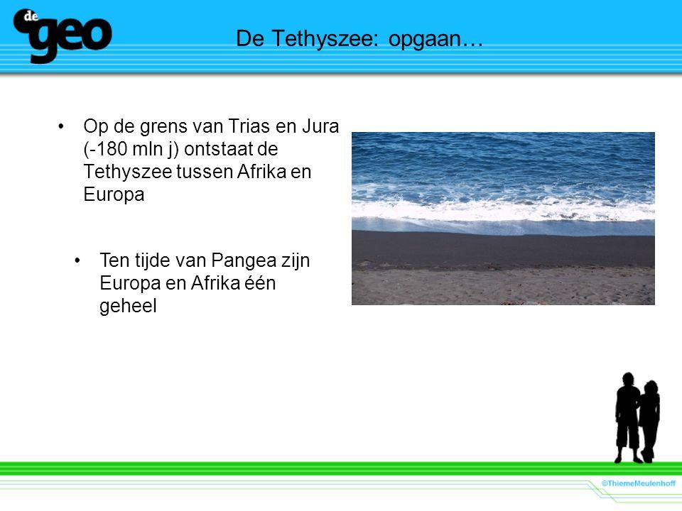 De Tethyszee: opgaan… Op de grens van Trias en Jura (-180 mln j) ontstaat de Tethyszee tussen Afrika en Europa Ten tijde van Pangea zijn Europa en Afrika één geheel