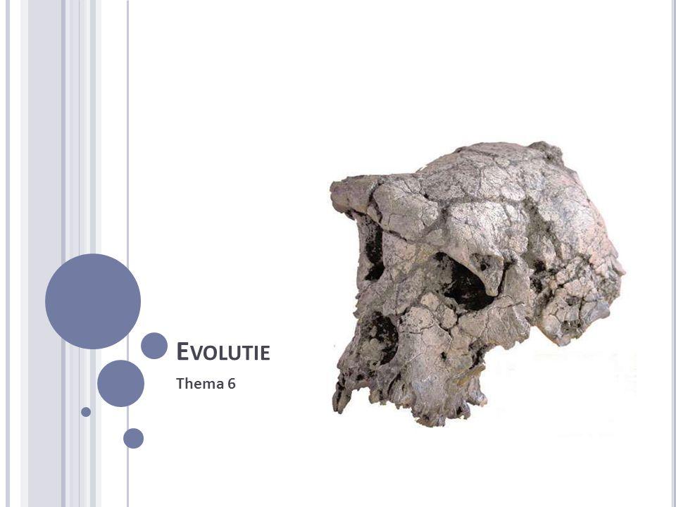 D E EVOLUTIETHEORIE Evolutie is een proces wat miljarden jaar plaatsvindt.