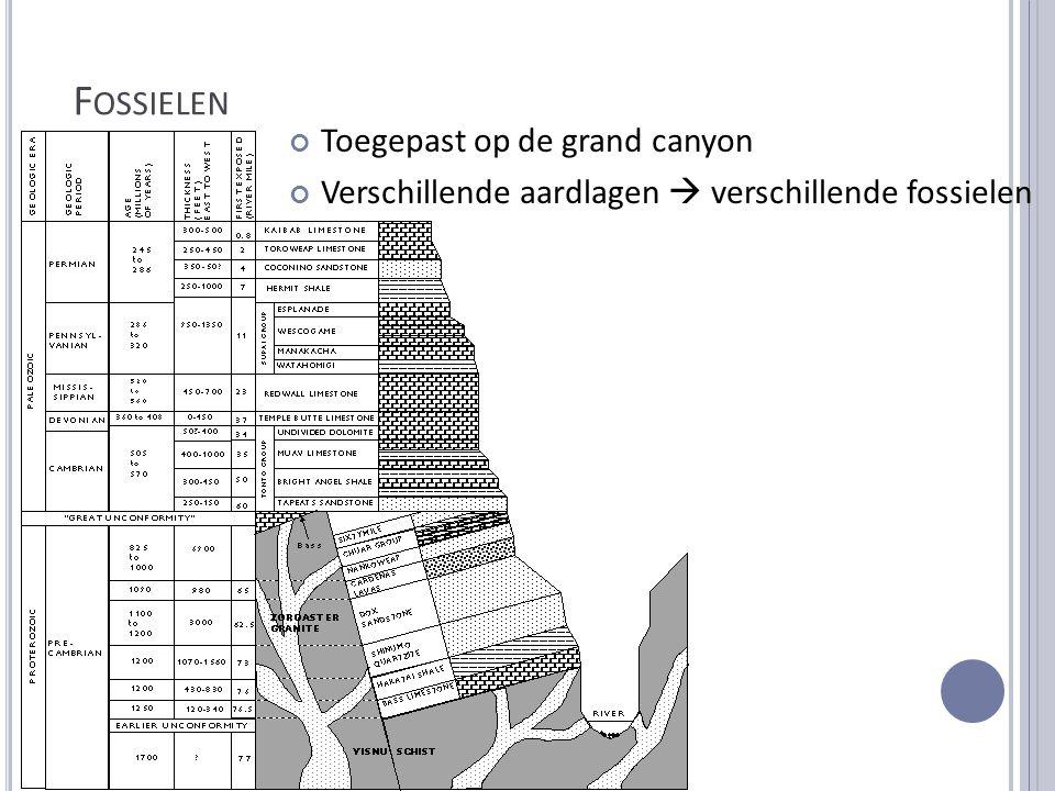 F OSSIELEN Toegepast op de grand canyon Verschillende aardlagen  verschillende fossielen