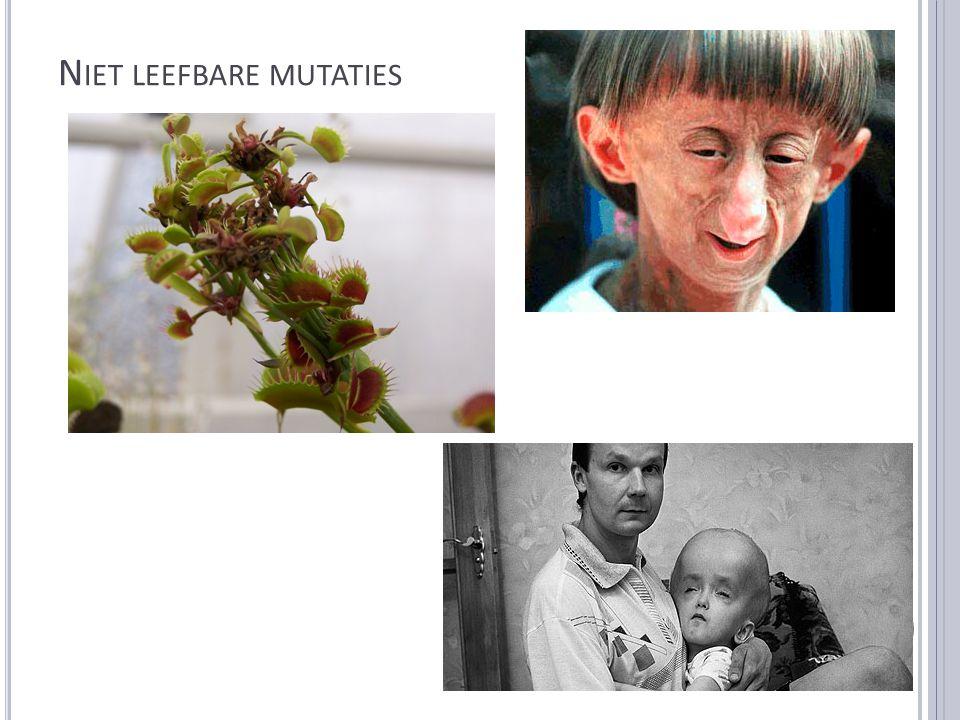 N IET LEEFBARE MUTATIES