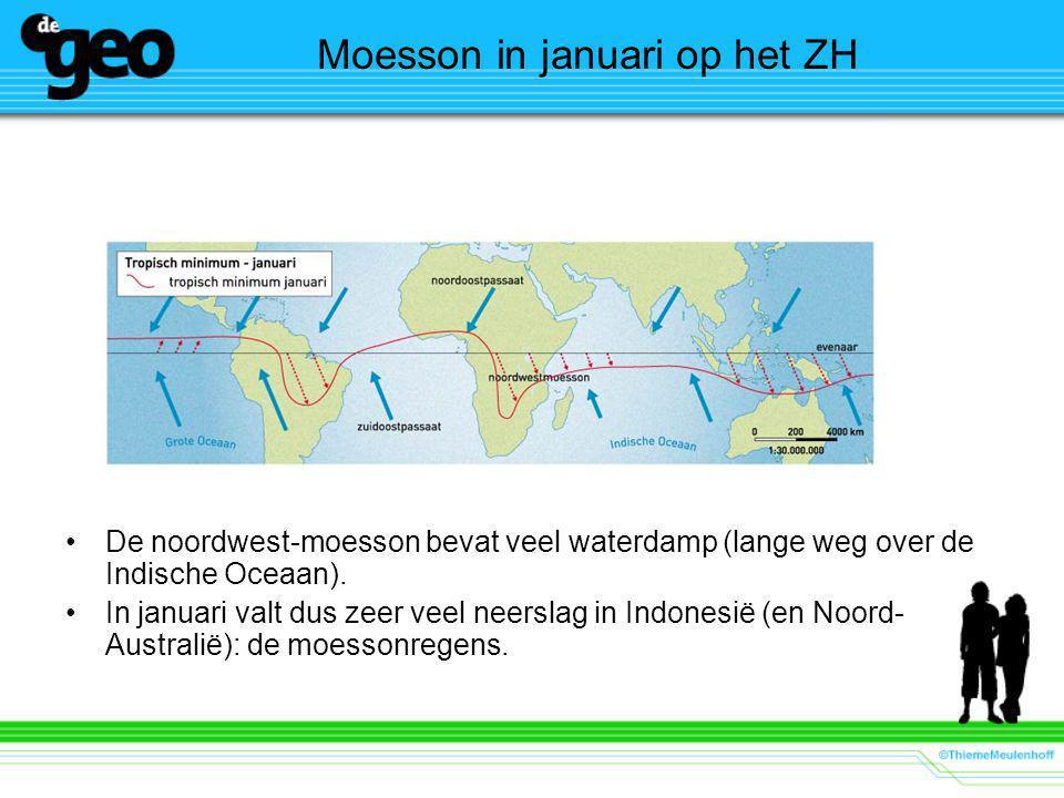 Moesson in januari op het ZH De noordwest-moesson bevat veel waterdamp (lange weg over de Indische Oceaan).