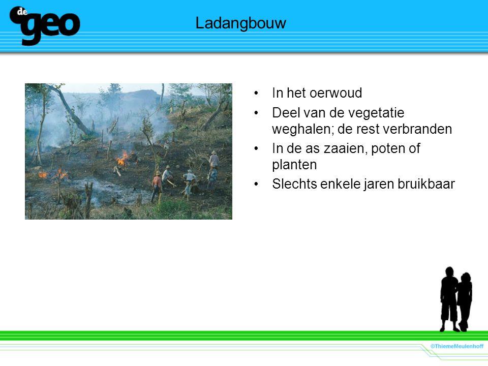 Ladangbouw In het oerwoud Deel van de vegetatie weghalen; de rest verbranden In de as zaaien, poten of planten Slechts enkele jaren bruikbaar
