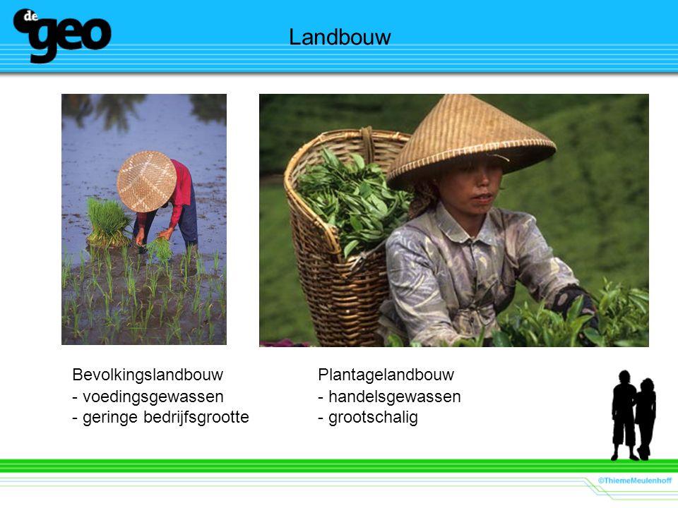 Landbouw BevolkingslandbouwPlantagelandbouw - voedingsgewassen- handelsgewassen - geringe bedrijfsgrootte- grootschalig