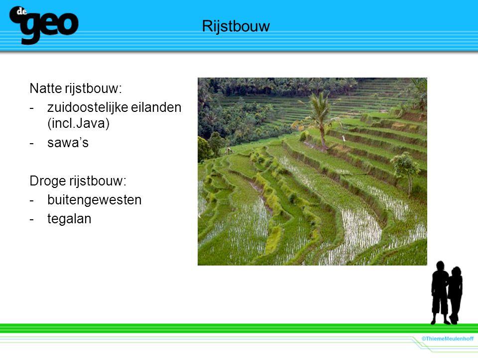 Rijstbouw Natte rijstbouw: -zuidoostelijke eilanden (incl.Java) -sawa's Droge rijstbouw: -buitengewesten -tegalan