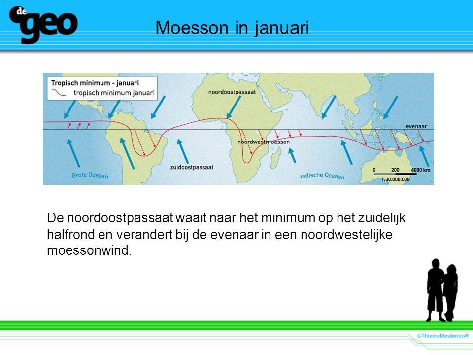 Moesson in januari De noordoostpassaat waait naar het minimum op het zuidelijk halfrond en verandert bij de evenaar in een noordwestelijke moessonwind