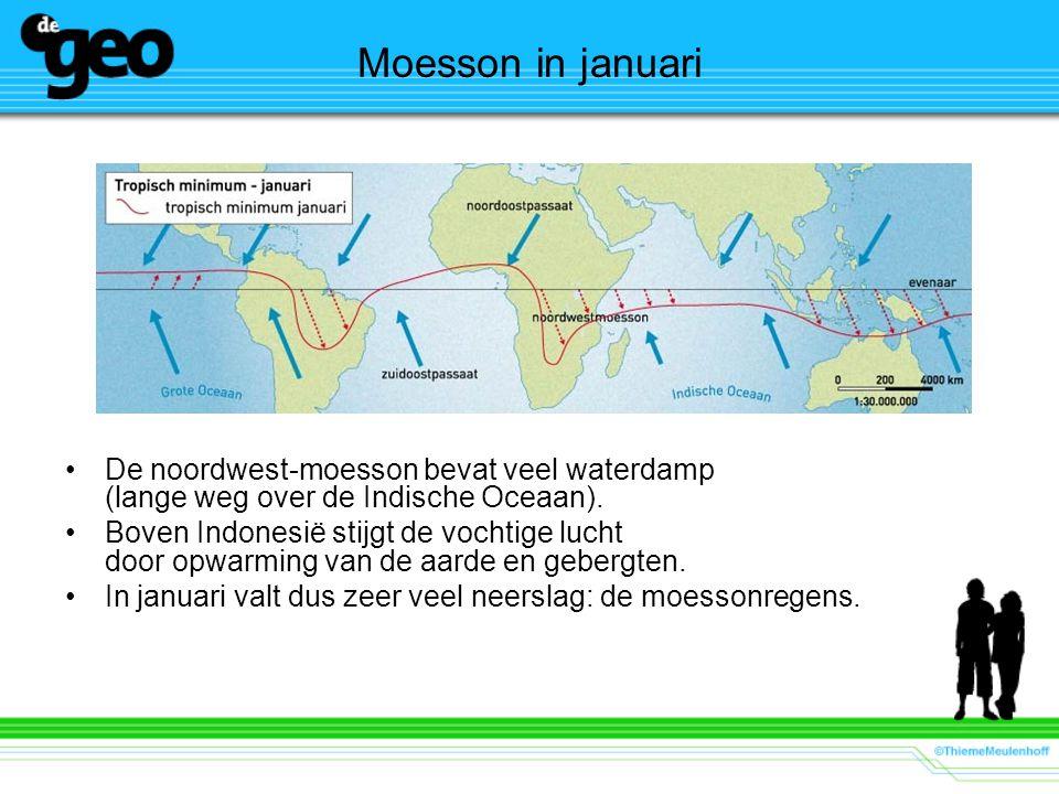De noordwest-moesson bevat veel waterdamp (lange weg over de Indische Oceaan). Boven Indonesië stijgt de vochtige lucht door opwarming van de aarde en