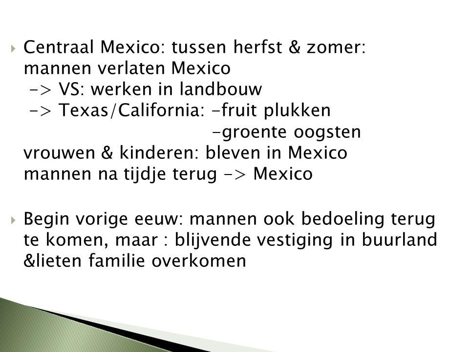  Centraal Mexico: tussen herfst & zomer: mannen verlaten Mexico -> VS: werken in landbouw -> Texas/California: -fruit plukken -groente oogsten vrouwe