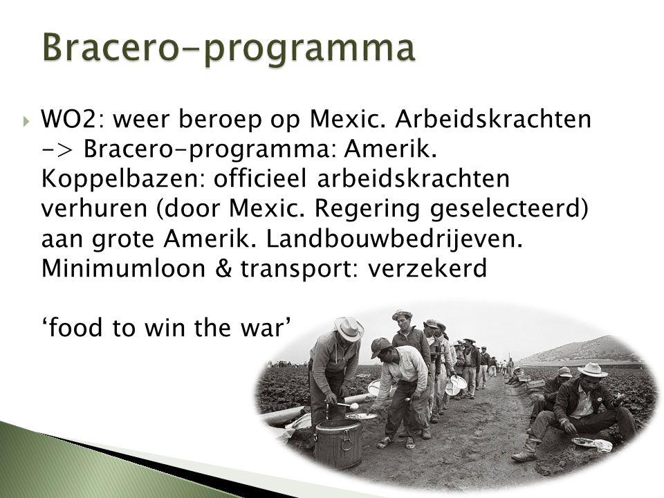  WO2: weer beroep op Mexic. Arbeidskrachten -> Bracero-programma: Amerik. Koppelbazen: officieel arbeidskrachten verhuren (door Mexic. Regering gesel