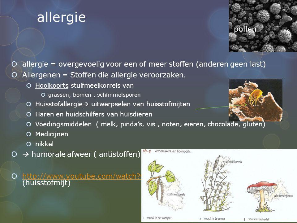 allergie  allergie = overgevoelig voor een of meer stoffen (anderen geen last)  Allergenen = Stoffen die allergie veroorzaken.  Hooikoorts stuifmee