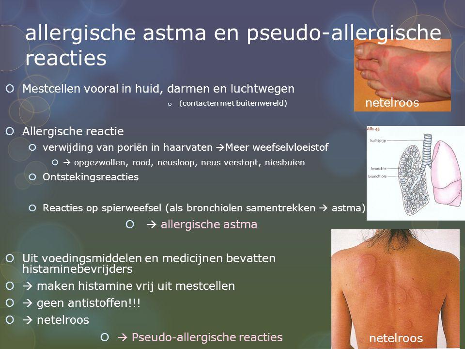allergische astma en pseudo-allergische reacties  Mestcellen vooral in huid, darmen en luchtwegen o (contacten met buitenwereld)  Allergische reactie  verwijding van poriën in haarvaten  Meer weefselvloeistof   opgezwollen, rood, neusloop, neus verstopt, niesbuien  Ontstekingsreacties  Reacties op spierweefsel (als bronchiolen samentrekken  astma)   allergische astma  Uit voedingsmiddelen en medicijnen bevatten histaminebevrijders   maken histamine vrij uit mestcellen   geen antistoffen!!.