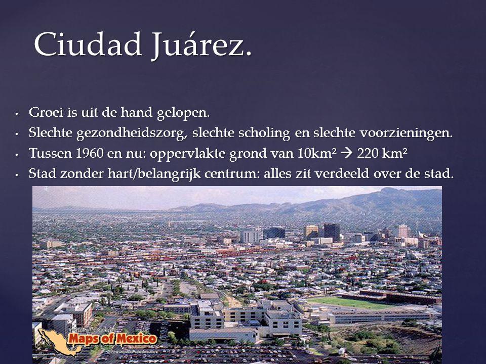 Milieuproblemen: De lucht is door uitstoot sterk vervuilt, Ciudad Juárez hoort tot de meest vervuilde steden.