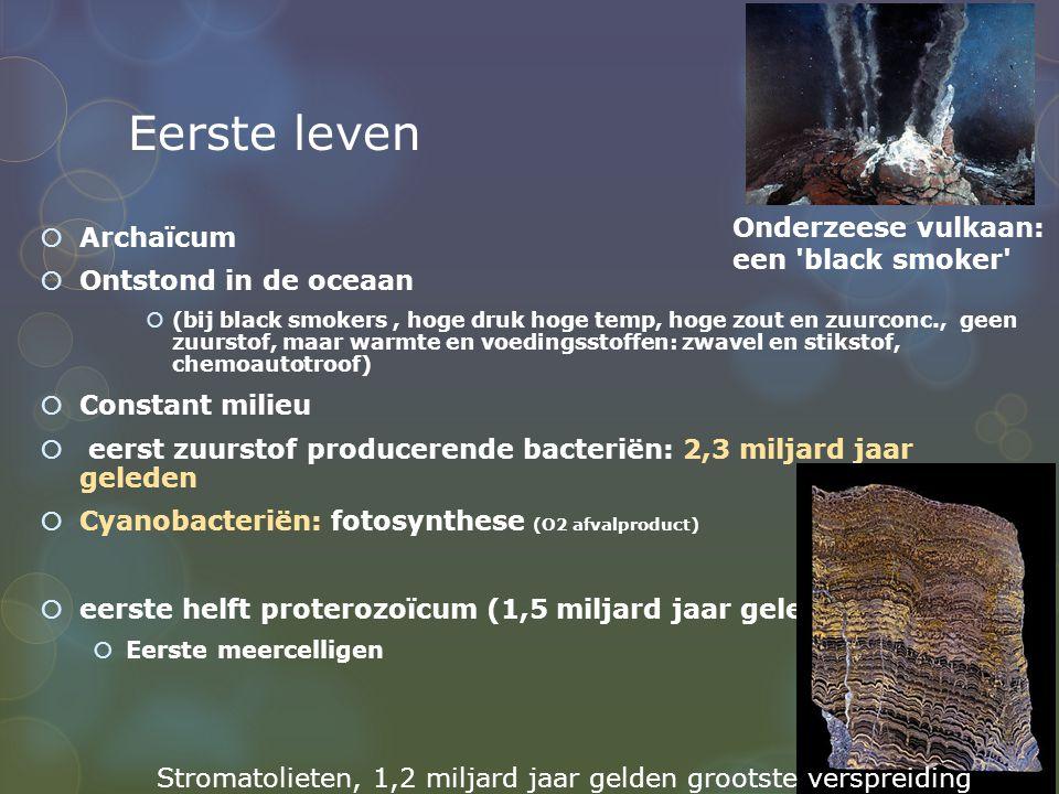 Eerste leven  Archaïcum  Ontstond in de oceaan  (bij black smokers, hoge druk hoge temp, hoge zout en zuurconc., geen zuurstof, maar warmte en voed