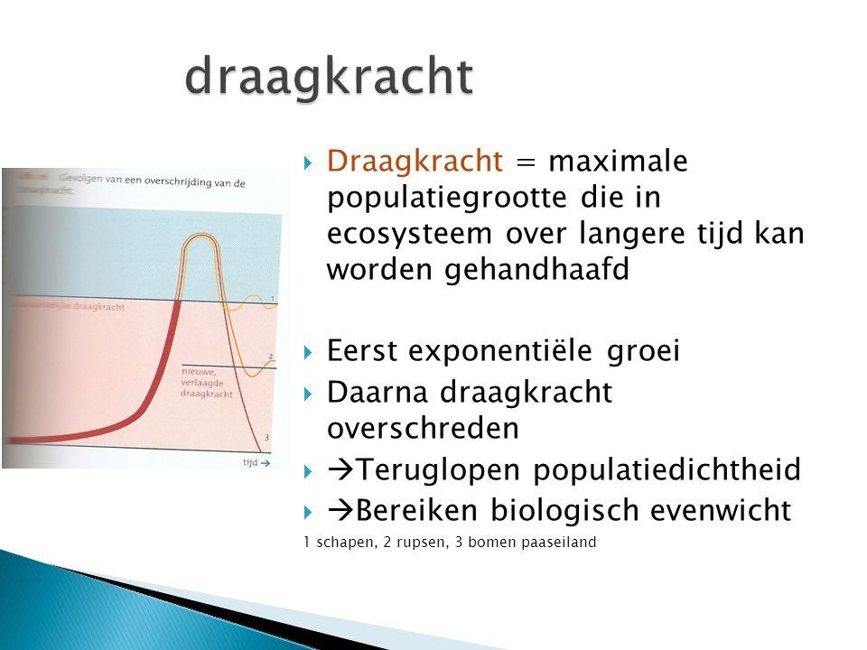  Draagkracht = maximale populatiegrootte die in ecosysteem over langere tijd kan worden gehandhaafd  Eerst exponentiële groei  Daarna draagkracht o