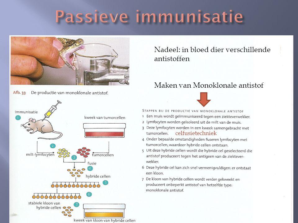 Nadeel: in bloed dier verschillende antistoffen Maken van Monoklonale antistof celfusietechniek
