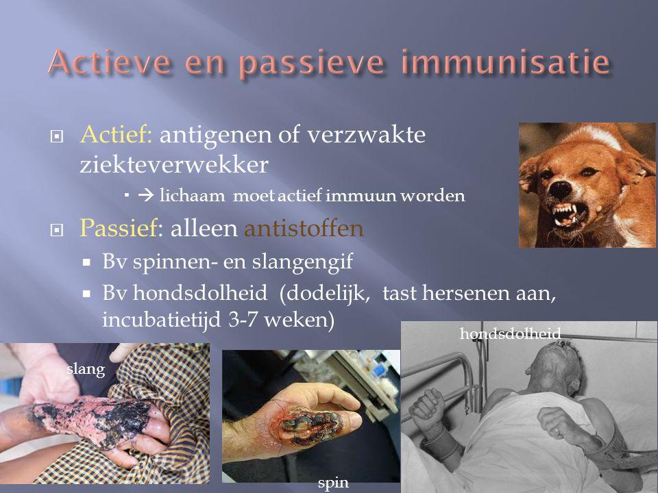  Actief: antigenen of verzwakte ziekteverwekker   lichaam moet actief immuun worden  Passief: alleen antistoffen  Bv spinnen- en slangengif  Bv