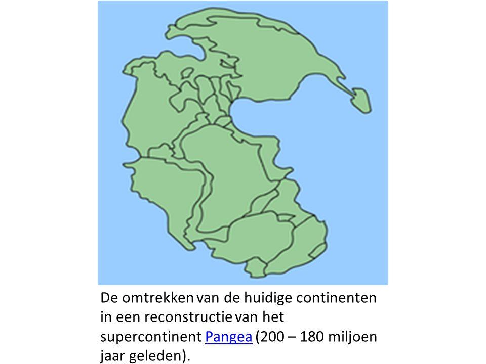 De omtrekken van de huidige continenten in een reconstructie van het supercontinent Pangea (200 – 180 miljoen jaar geleden).Pangea