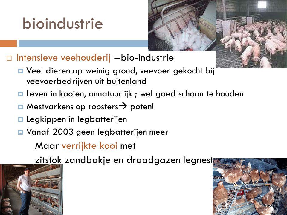 bioindustrie  Intensieve veehouderij =bio-industrie  Veel dieren op weinig grond, veevoer gekocht bij veevoerbedrijven uit buitenland  Leven in koo