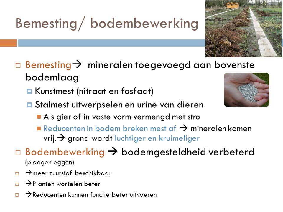 Bemesting/ bodembewerking  Bemesting  mineralen toegevoegd aan bovenste bodemlaag  Kunstmest (nitraat en fosfaat)  Stalmest uitwerpselen en urine