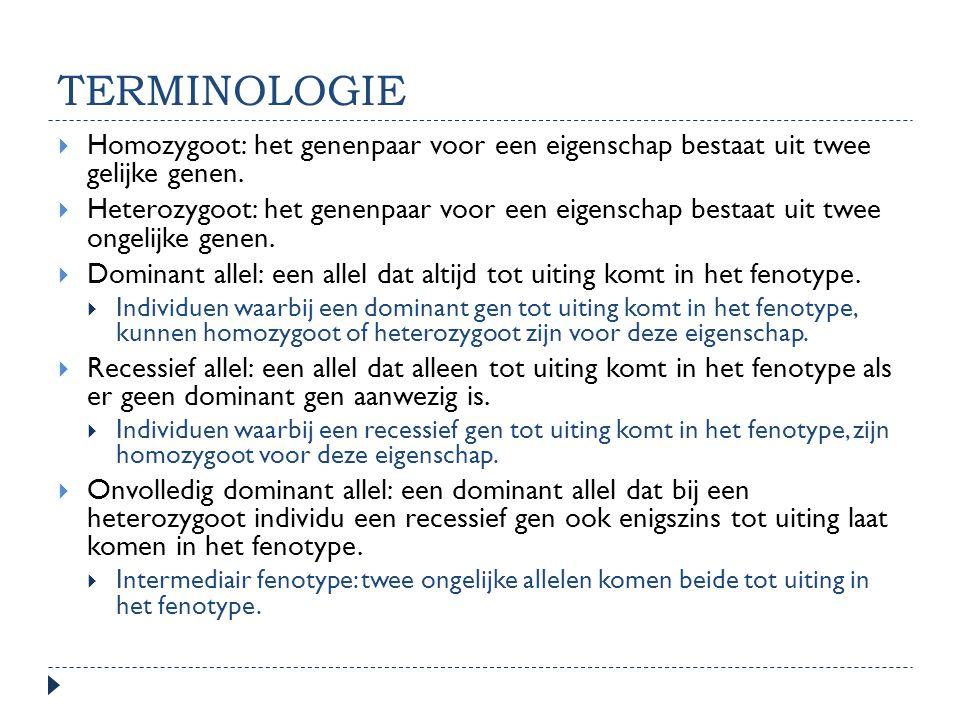 TERMINOLOGIE  Homozygoot: het genenpaar voor een eigenschap bestaat uit twee gelijke genen.  Heterozygoot: het genenpaar voor een eigenschap bestaat