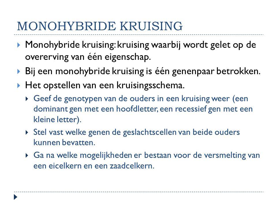 MONOHYBRIDE KRUISING  Monohybride kruising: kruising waarbij wordt gelet op de overerving van één eigenschap.  Bij een monohybride kruising is één g