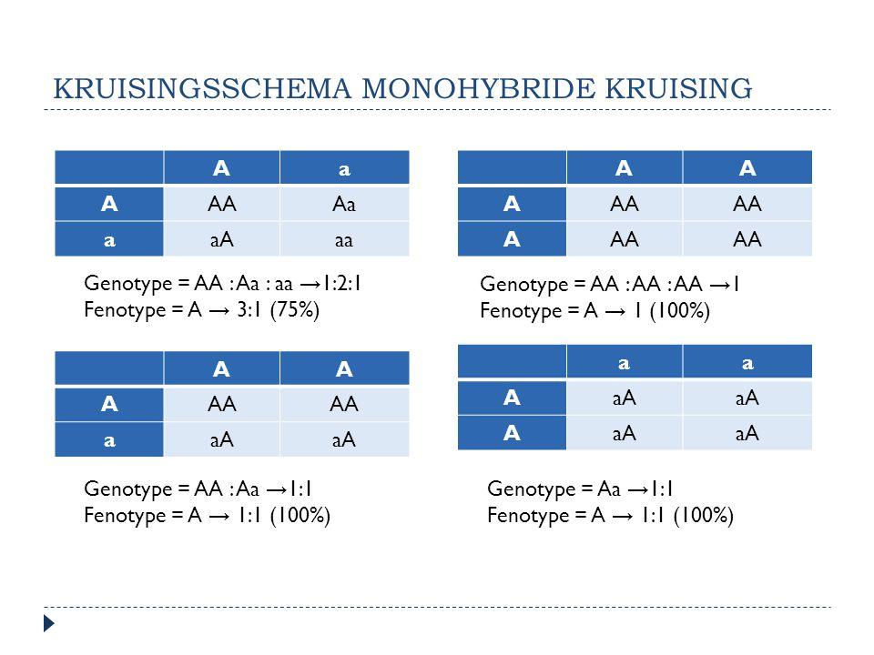 KRUISINGSSCHEMA MONOHYBRIDE KRUISING Aa AAAAa aaAaa AA AAA aaA AA AAA A aa AaA A Genotype = AA : Aa : aa → 1:2:1 Fenotype= A → 3:1 (75%) Genotype = AA