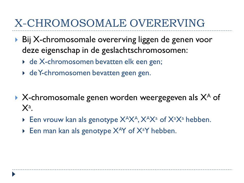 X-CHROMOSOMALE OVERERVING  Bij X-chromosomale overerving liggen de genen voor deze eigenschap in de geslachtschromosomen:  de X-chromosomen bevatten