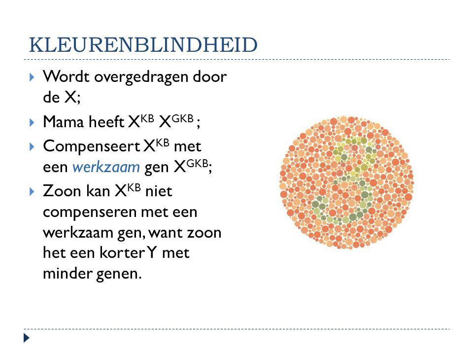 KLEURENBLINDHEID  Wordt overgedragen door de X;  Mama heeft X KB X GKB ;  Compenseert X KB met een werkzaam gen X GKB ;  Zoon kan X KB niet compen