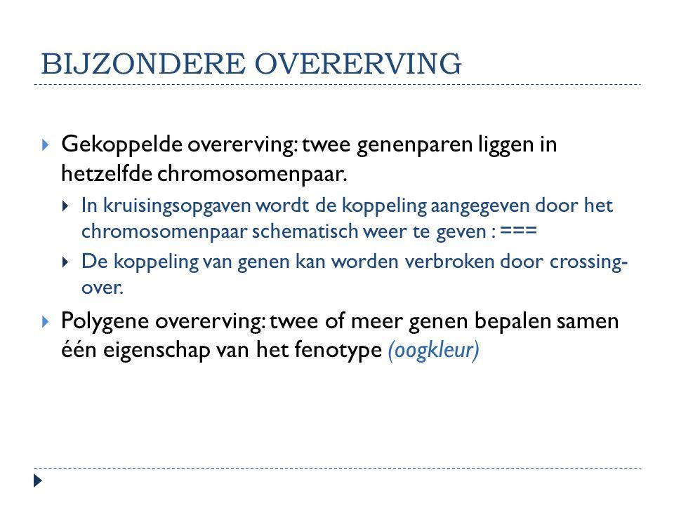 BIJZONDERE OVERERVING  Gekoppelde overerving: twee genenparen liggen in hetzelfde chromosomenpaar.  In kruisingsopgaven wordt de koppeling aangegeve