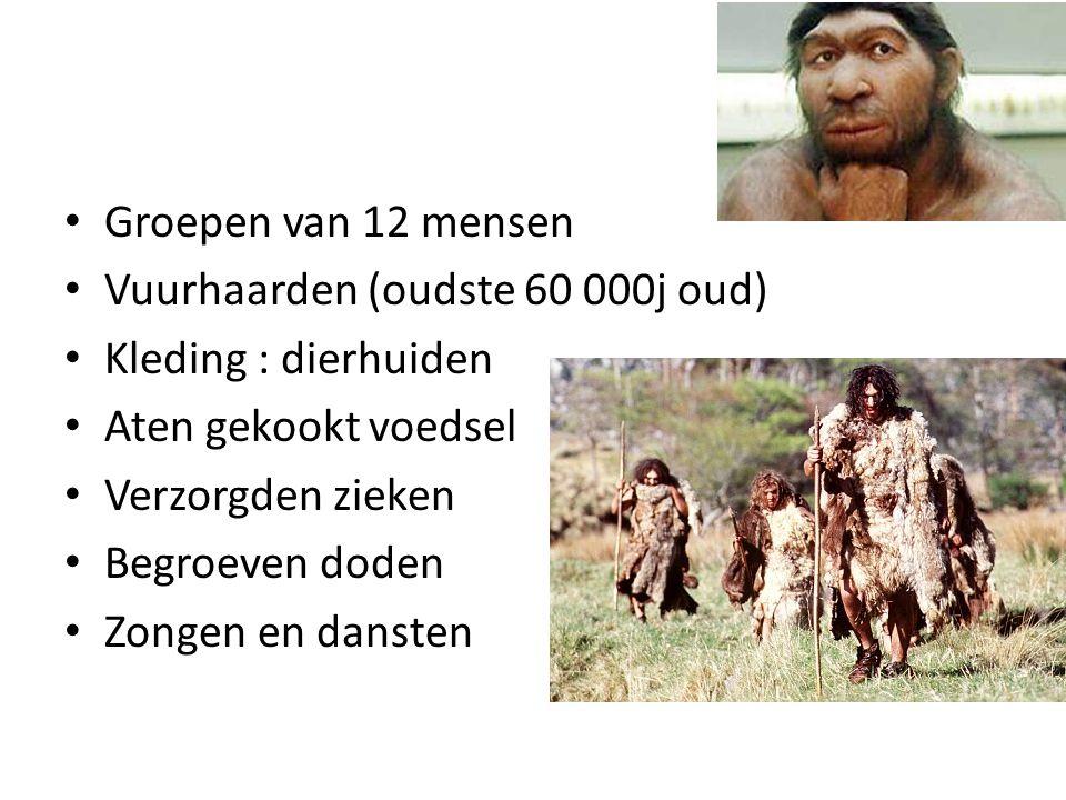 Groepen van 12 mensen Vuurhaarden (oudste 60 000j oud) Kleding : dierhuiden Aten gekookt voedsel Verzorgden zieken Begroeven doden Zongen en dansten
