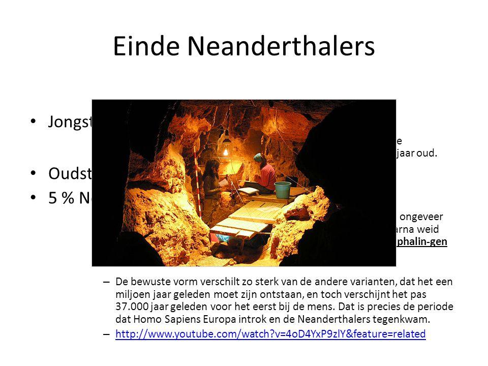 Einde Neanderthalers Jongste Neanderthalervondst = 27 000j oud – In El Sidron (spanje) zijn in de afgelopen zes jaar 1330 fossiele skeletresten van Neanderthalers opgegraven van ca.