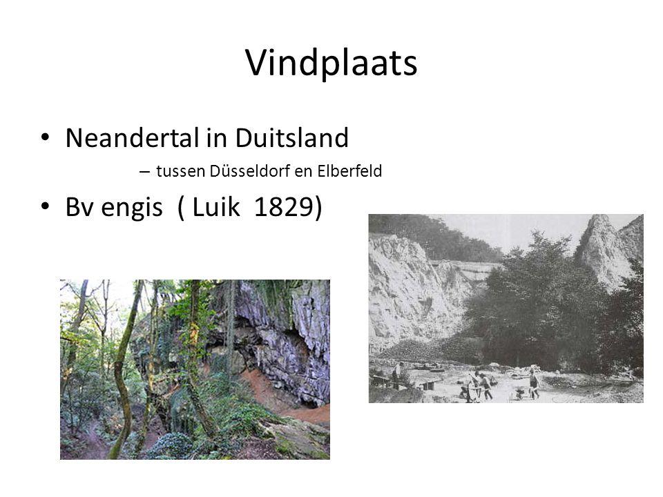 Vindplaats Neandertal in Duitsland – tussen Düsseldorf en Elberfeld Bv engis ( Luik 1829)