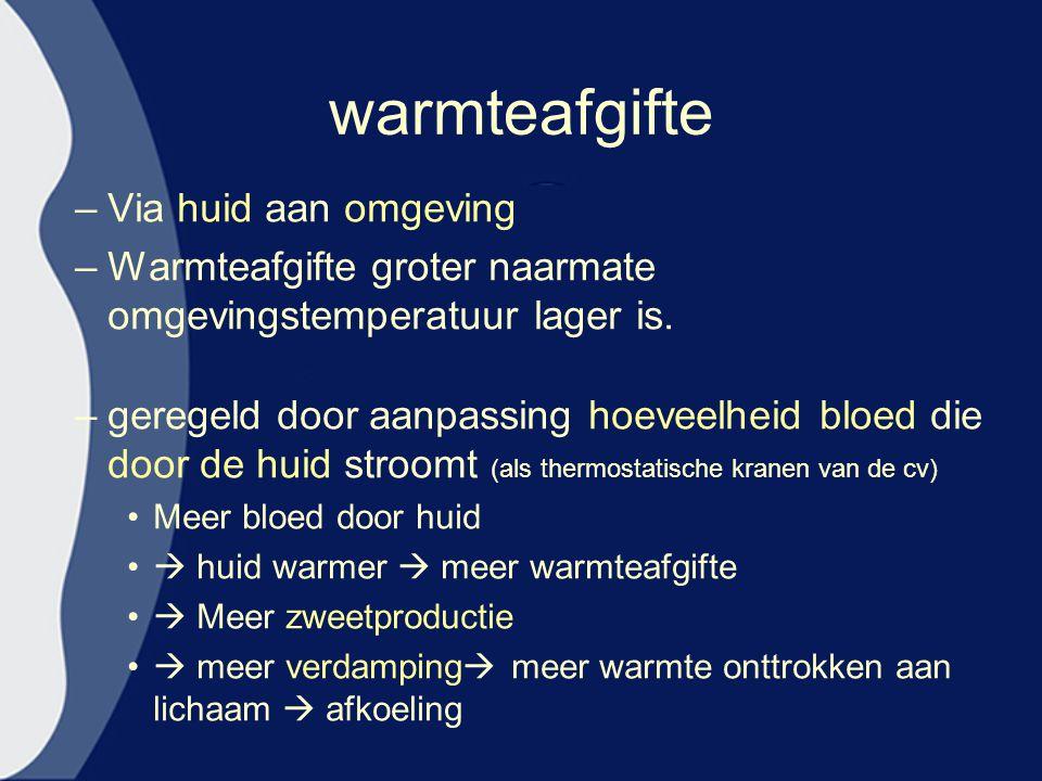 warmteafgifte –Via huid aan omgeving –Warmteafgifte groter naarmate omgevingstemperatuur lager is. –geregeld door aanpassing hoeveelheid bloed die doo
