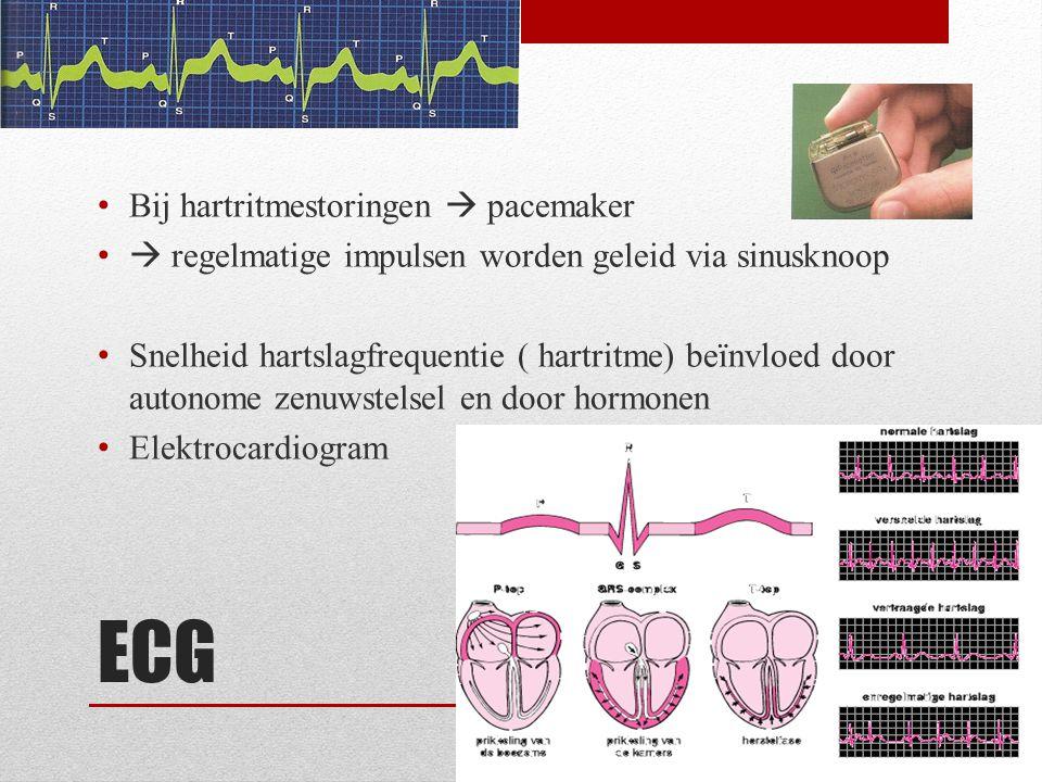 ECG Bij hartritmestoringen  pacemaker  regelmatige impulsen worden geleid via sinusknoop Snelheid hartslagfrequentie ( hartritme) beïnvloed door aut