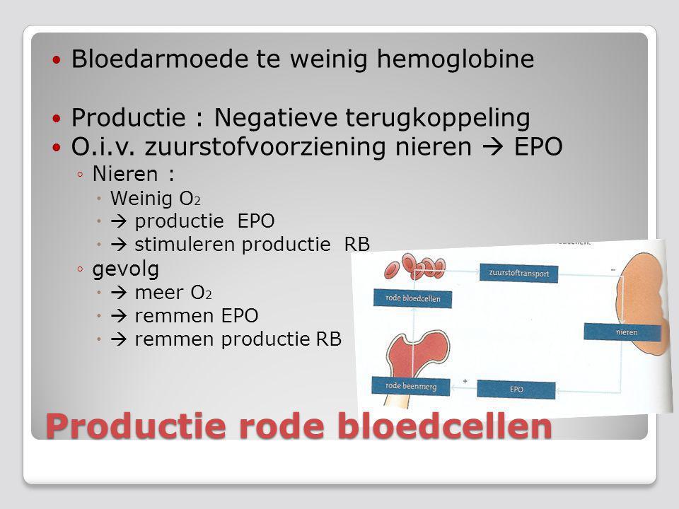 Productie rode bloedcellen Bloedarmoede te weinig hemoglobine Productie : Negatieve terugkoppeling O.i.v. zuurstofvoorziening nieren  EPO ◦Nieren : 