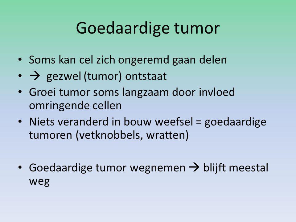 kanker Kwaadaardige tumoren – Organen – Lymfevatenstelsel  hodgkin – Rode beenmerg  leukemie = Gevolg van mutaties in genen van een cel Pas kankercel na een aantal mutaties in verschillende genen Kans op mutaties groter naarmate cel ouder is Cel van blaaskanker