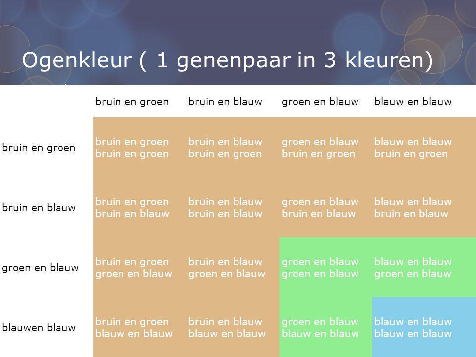 Ogenkleur ( 1 genenpaar in 3 kleuren) bruin en groenbruin en blauwgroen en blauwblauw en blauw bruin en groenbruin en groen bruin en blauw bruin en gr