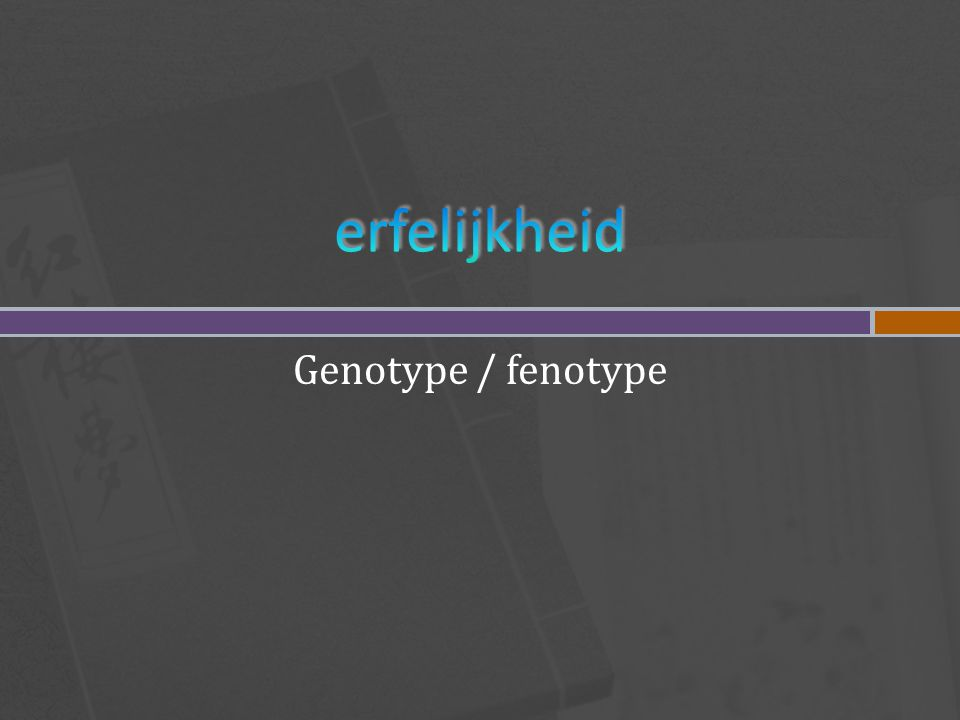 Genotype / fenotype
