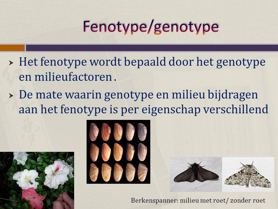  Het fenotype wordt bepaald door het genotype en milieufactoren.  De mate waarin genotype en milieu bijdragen aan het fenotype is per eigenschap ver