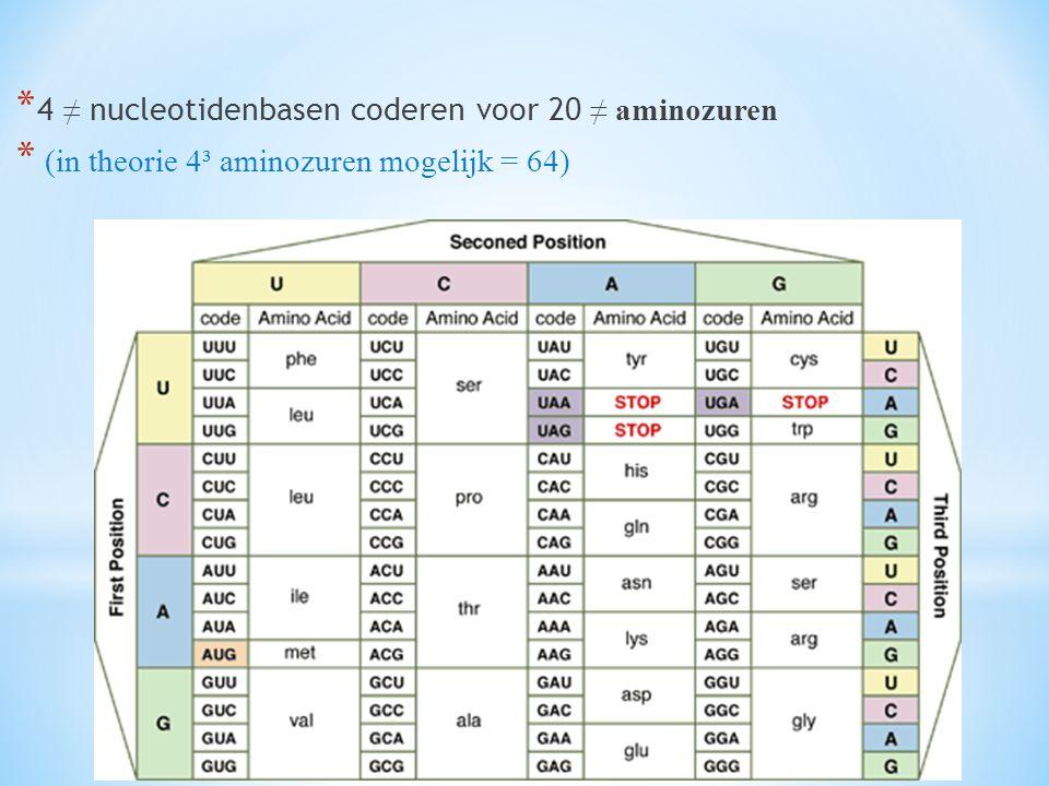 * 4 ≠ nucleotidenbasen coderen voor 20 ≠ aminozuren * (in theorie 4³ aminozuren mogelijk = 64)