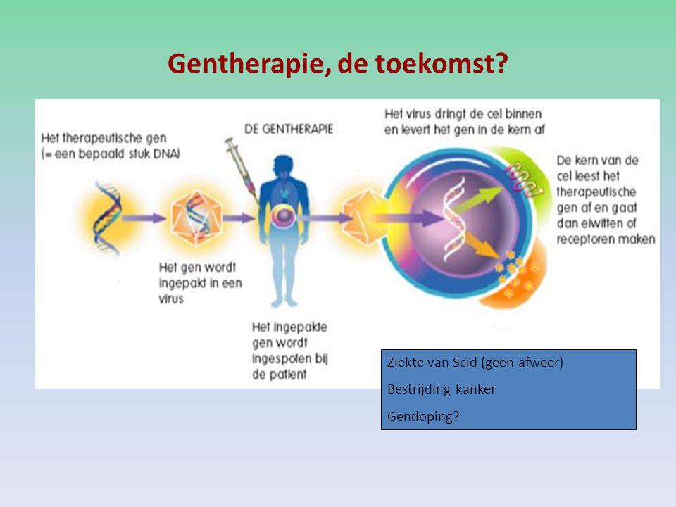 Gentherapie, de toekomst? Ziekte van Scid (geen afweer) Bestrijding kanker Gendoping?