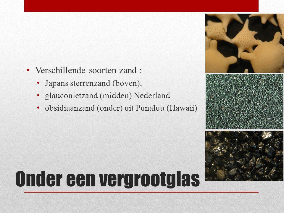 grond Grond bestaat uit kleine korreltjes steen, mineralen en organisch materiaal.
